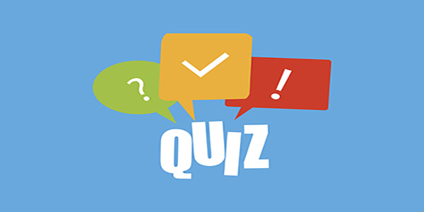 Best Quizzes